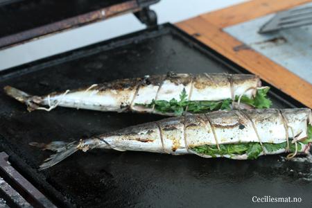 Grillet-makrell