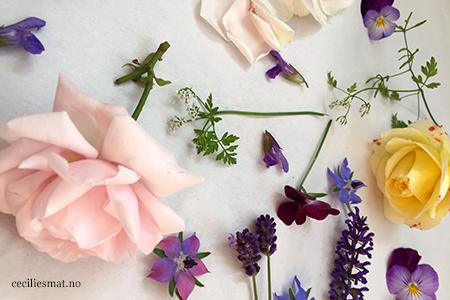 Spiselige-blomster