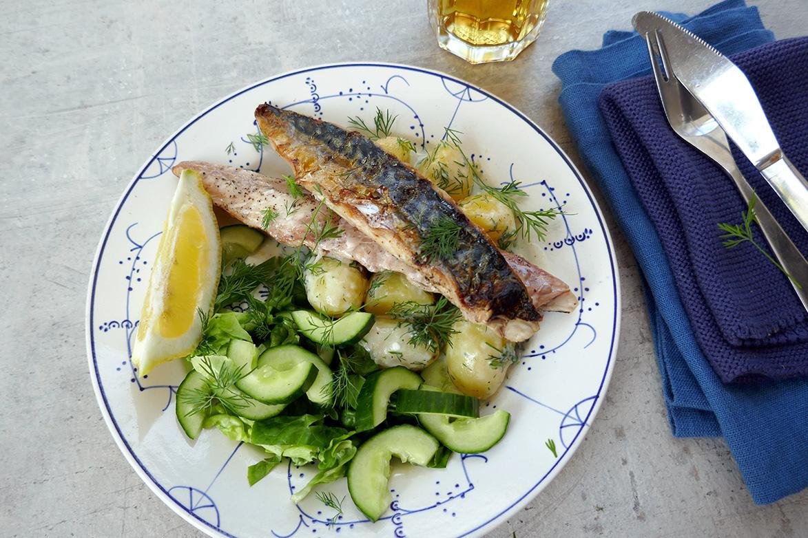 Grillet makrell og dillstuede poteter